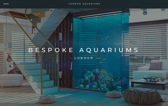London Aquariums - Website Design Essex Portfolio